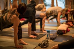 A-New-Beginning-Hie-Kim-Yoga-Retreat-Alina-Matis-Photography-057 - Hie Kim Yoga - Yoga Retreat - Yoga Workshops und Reisen