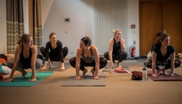 A-New-Beginning-Hie-Kim-Yoga-Retreat-Alina-Matis-Photography-059 - Hie Kim Yoga - Yoga Retreat - Yoga Workshops und Reisen