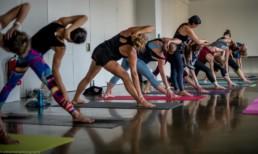 Hie-Kim-Friends-2018-Yoga-Retreat-Alina-Matis-Photography-137 - Hie Kim Yoga - Yoga Retreat - Yoga Workshops und Reisen