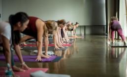 Hie-Kim-Friends-2018-Yoga-Retreat-Alina-Matis-Photography-172 - Hie Kim Yoga - Yoga Retreat - Yoga Workshops und Reisen